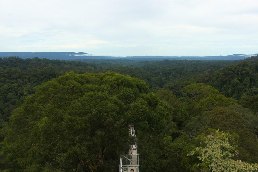 Nationalparken Ulu Temburong, Brunei